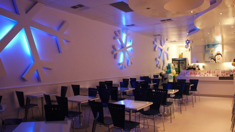 icey-ice-gallery-2