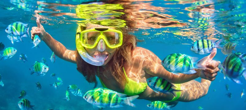 Caribbean girl in snorkeling mask dive underwater with fishes school in coral reef sea pool