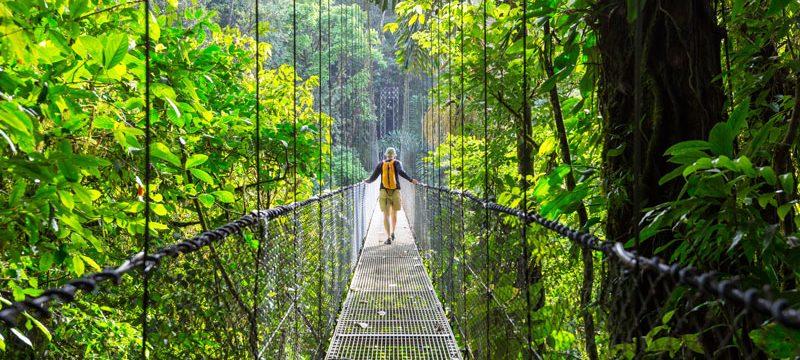 Costa Rica Hiking in green tropical jungle