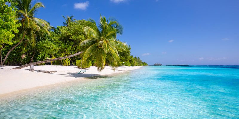 Beach at Vomo Island Fiji