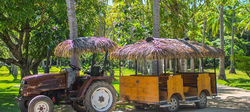 top_plantation_island_car